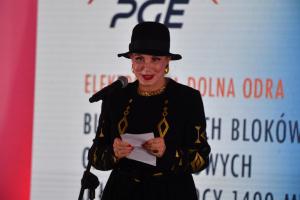 EDO PGE - US Ambassador to Poland