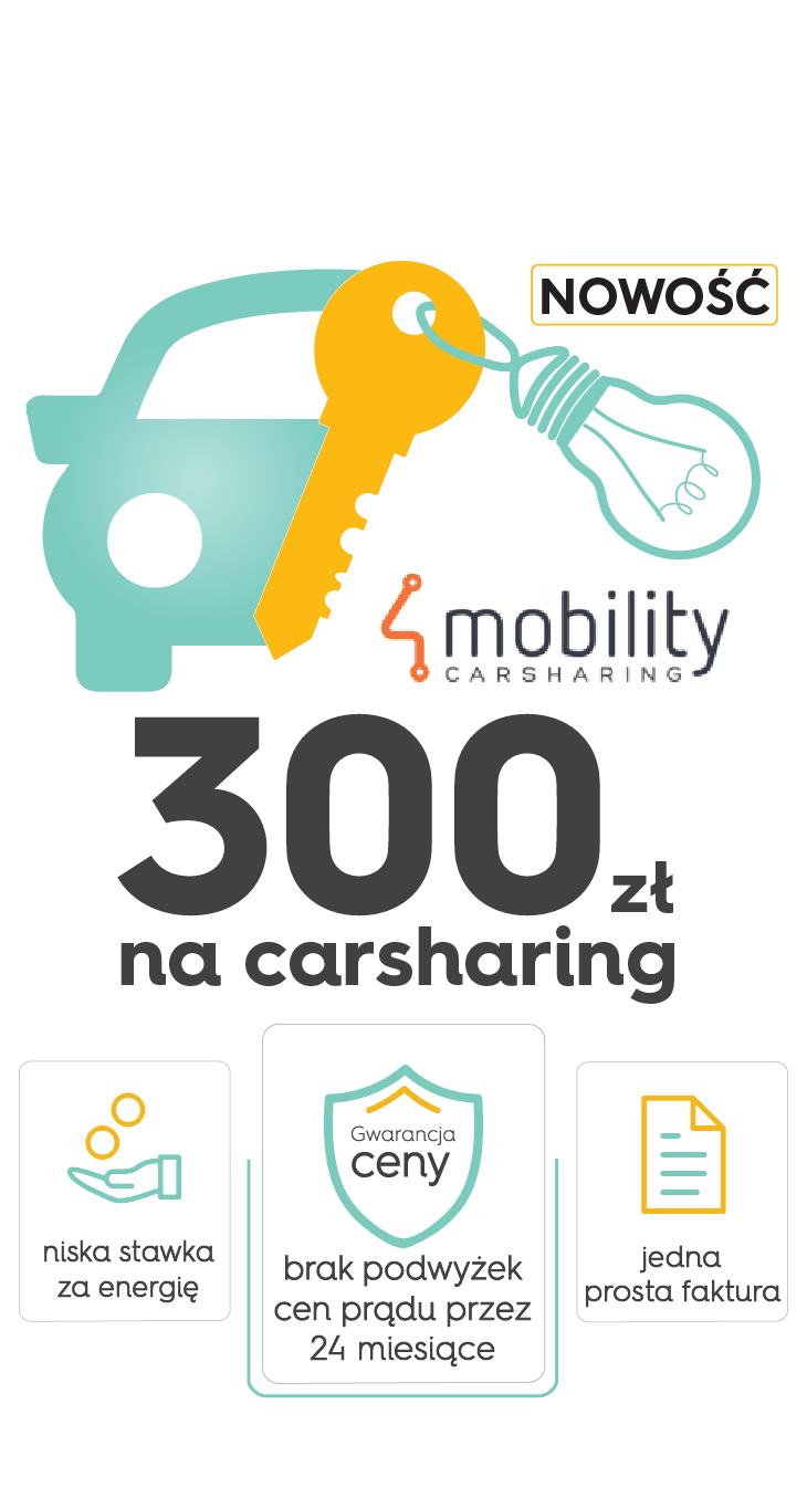 banner-300-zl-na-carsharing.png
