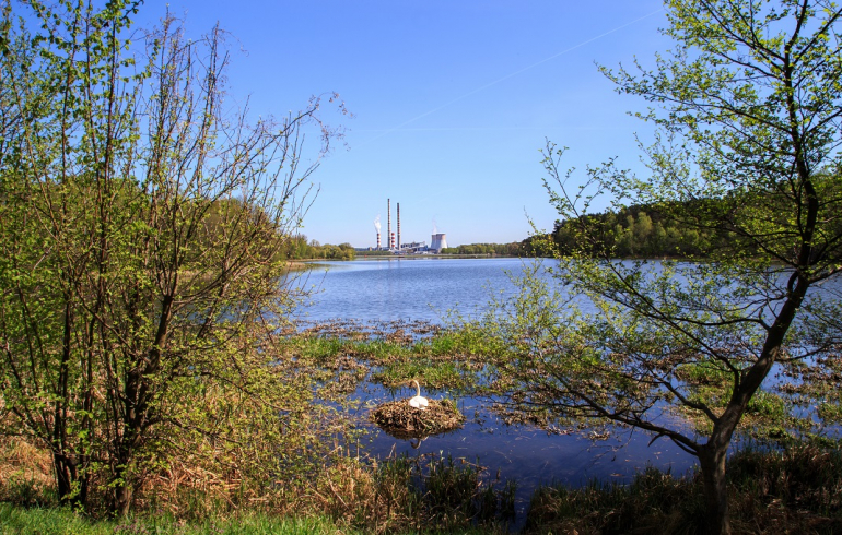 elektrownia-rybnik-005.jpg