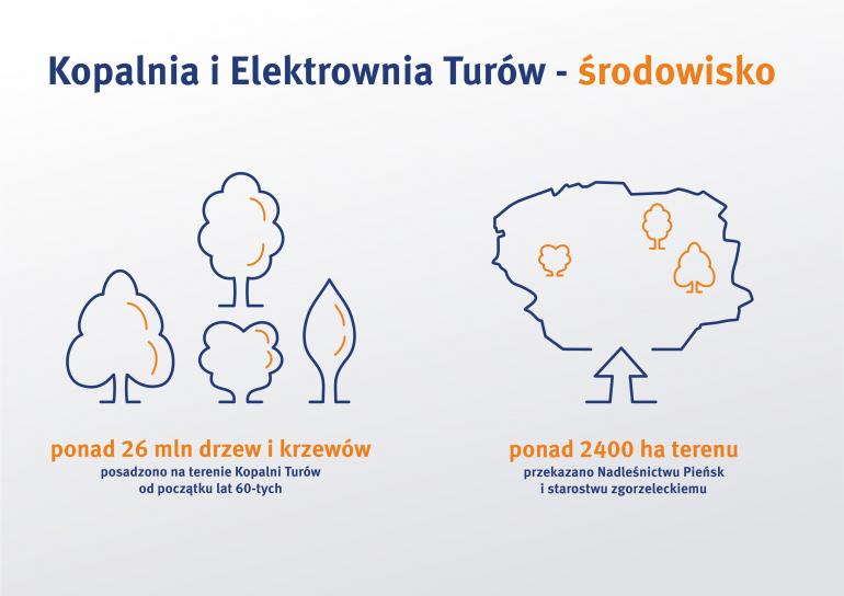 infografika_lasy_turow.jpg
